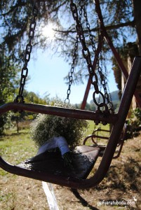 ramodenovia-paniculata